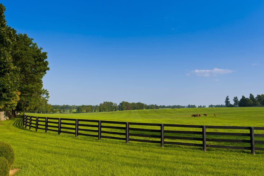 , DIY Tips for Fixing A Split Rail Fence, Metro Fence