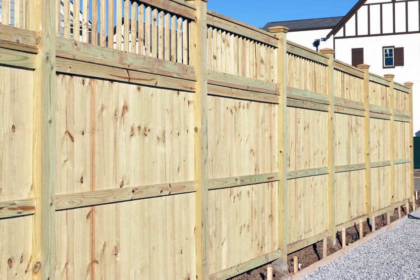 privacy Thornton fencing