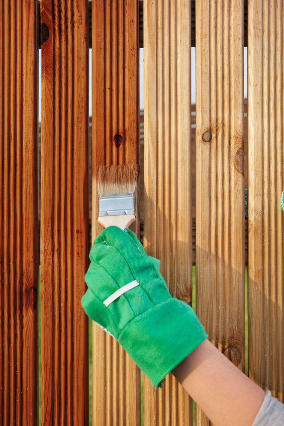 wooden Brighton fence maintenance