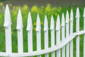affordable Westminster fencing